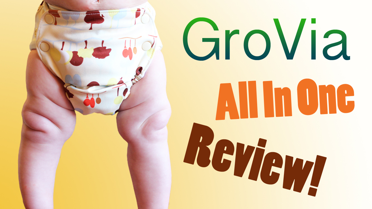 GroVia Hybrid Diaper Review & Giveaway - Zephyr Hill
